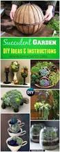 816 best garden images on pinterest gardening plants and