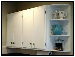 Best Hinges For Kitchen Cabinets Replacement Hinges For Kitchen Cabinets Image For How To