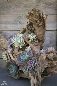 best 10 succulent planters ideas on pinterest succulent wall