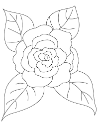 camellia leaves coloring download free camellia