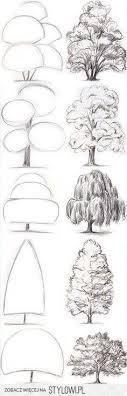 best 25 tree drawings ideas on trees drawing tutorial