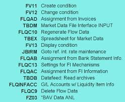 sap t code description table sap treasury tutorials tr module