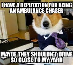 Ambulance Meme - lawyer dog i have a reputation for being an ambulance chaser