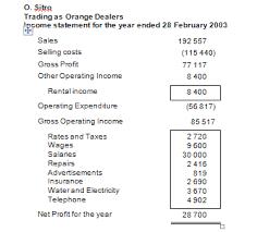 income statement and balance sheet