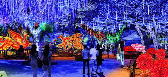 global winter a spectacular lantern festival and