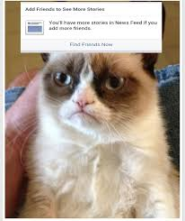 Grumpy Cat No Meme - grumpy cat no friends blank template imgflip