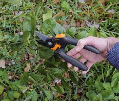 5 easy gardening tips u0026 tricks for beginners fiskars