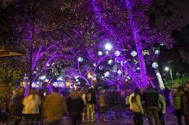 Zoo Lights by Los Angeles Zoo Lights Delights Crowds Laexcites Com