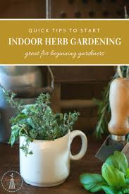 quick tips to start your indoor herb garden today