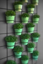wall mounted planters are ideal for herbs and small spaces