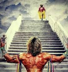 Randy Savage Meme - 35 best wrastlin images on pinterest wrestling wwe superstars