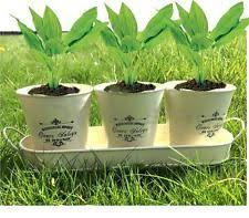 herbs planter herb planter pots window boxes baskets ebay