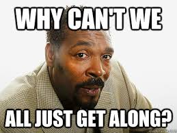 Can T We All Just Get Along Meme - why can t we all just get along rodney king quickmeme