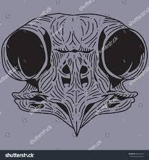 black skull owl on blue background stock vector 640248169