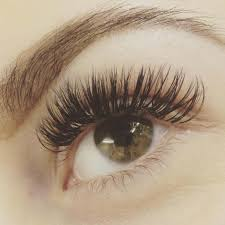 3d extensions 3d 6d eyelashes extensions zoya s beauty salon
