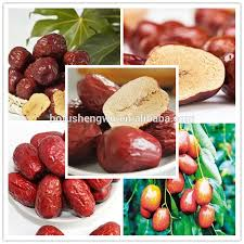 jujube en cuisine jujube seed extract jujube seed extract suppliers and manufacturers