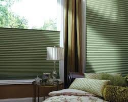 Roller Shades For Windows Designs Diy Motorized Double Roller Shade Dual Blinds Throughout Electric