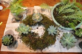 Succulent And Cacti Pictures Gallery Garden Design Holiday Centerpieces Moss And Succulent Wreath Gallery Garden