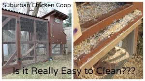 chicken coop design easy to clean with how build the easy clean