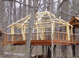 longwood gardens pavillion treehouse stauffer woodworking