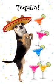 tequila birthday greeting card happy birthday printable card