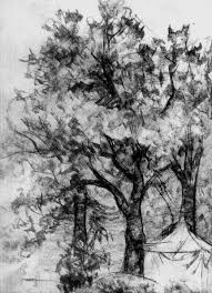 trees sketch 001 by fufapadurii on deviantart