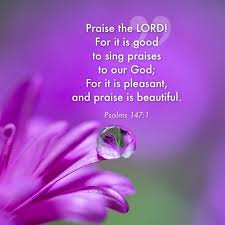 301 best psalms praise thanksgiving images on bible