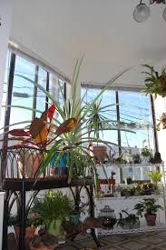 plan indoor plant room