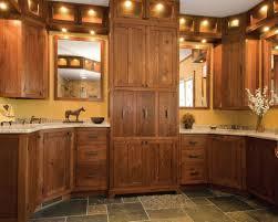 popular kitchen designs cabinet kitchen base cabinets design trendy kitchen sink base
