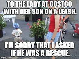 Landscaping Memes - image tagged in kid on leash 2 funny memes funny memes parenting