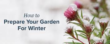 how to prepare your garden for winter proflowers blog
