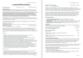curriculum vitae sles for experienced accountants oneonta personal profile exles for resumes