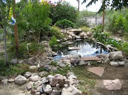 Backyard Garden Ponds The Turtle Pond