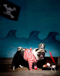 Large Dog Halloween Costume Ideas 18 Blog Images Pet Supplies Blog