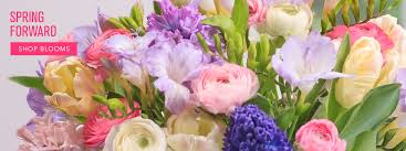 flowers los angeles los angeles florist flower delivery by sayla flowers
