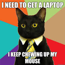 Cat Laptop Meme - i need to get a laptop cat meme cat planet cat planet