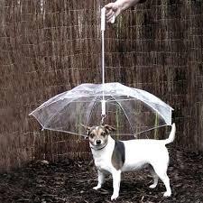 boxer dog umbrella americadog dog umbrella leash u2013 dogs heaven store