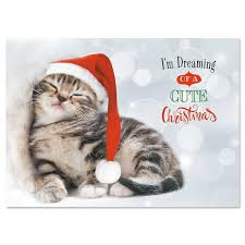 3400 best christmas cats images on pinterest christmas cats