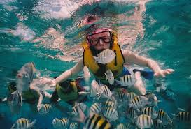Colorado Snorkeling images The ultimate guide to snorkeling outside pursuits jpg