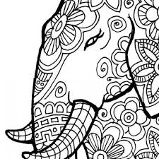 free printable elephant coloring pages adults ad54569