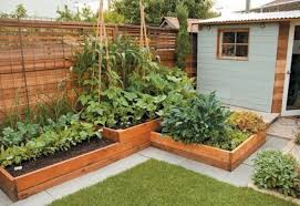 Backyard Garden Ideas Creative Diy Backyard Gardening Ideas You Need To 2018