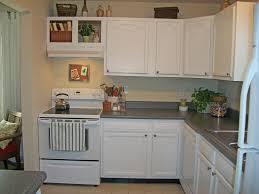 Painting The Kitchen Painting The Kitchen Cabinets With Painting Kitchen Cabinets Decor