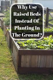 Building A Raised Vegetable Garden by 3352 Best Garden 3 Images On Pinterest Gardening Garden Ideas