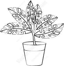 plant in a pot cartoon clipart vector toons