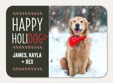 dog christmas cards dog christmas cards simply to impress