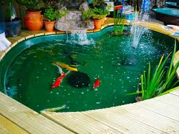 backyard pond ideas pretty and small backyard fish pond ideas at