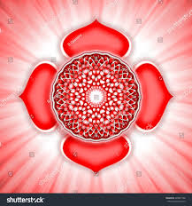root chakra open root chakra lotus stock illustration 428807188 shutterstock