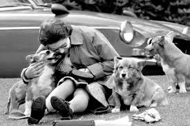 queen elizabeth dog 8 decades of british royal corgis reportedly at an end the new