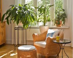 does water quality affect the well being of your indoor plants