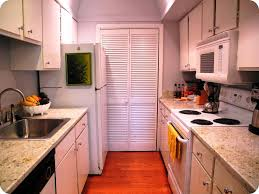 Tiny Galley Kitchen Design Ideas Pictures Small Galley Style Traditional Galley Kitchen